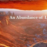 Abundance Light Slide17