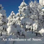 Abundance Snow Slide14
