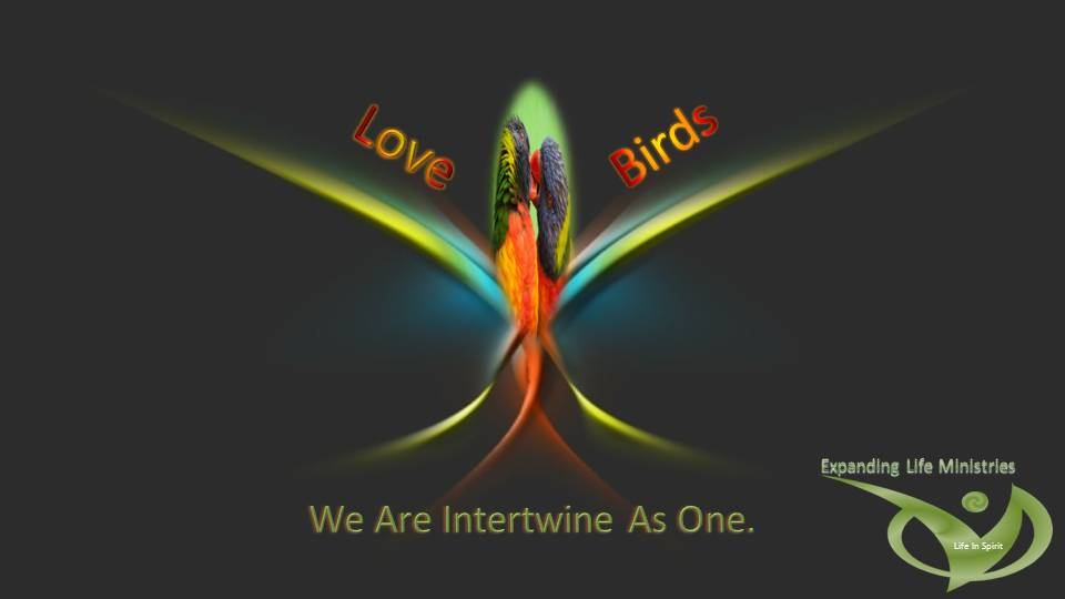 We are Intertwine as one