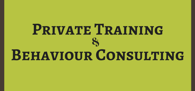 Behaviour Consultation and Private Training