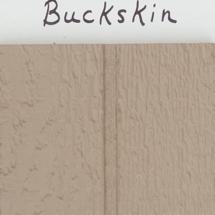 Paint-Buckskin