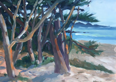 Cypress Trees at Carmel Overview
