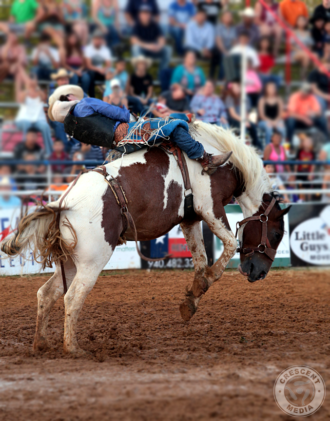 North Texas State Fair and Rodeo Bronco rider