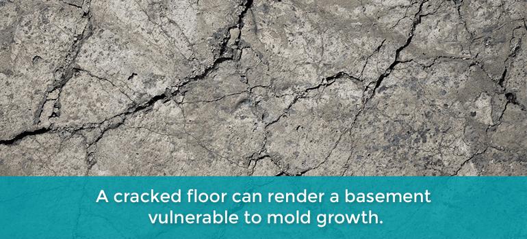 cracked floors
