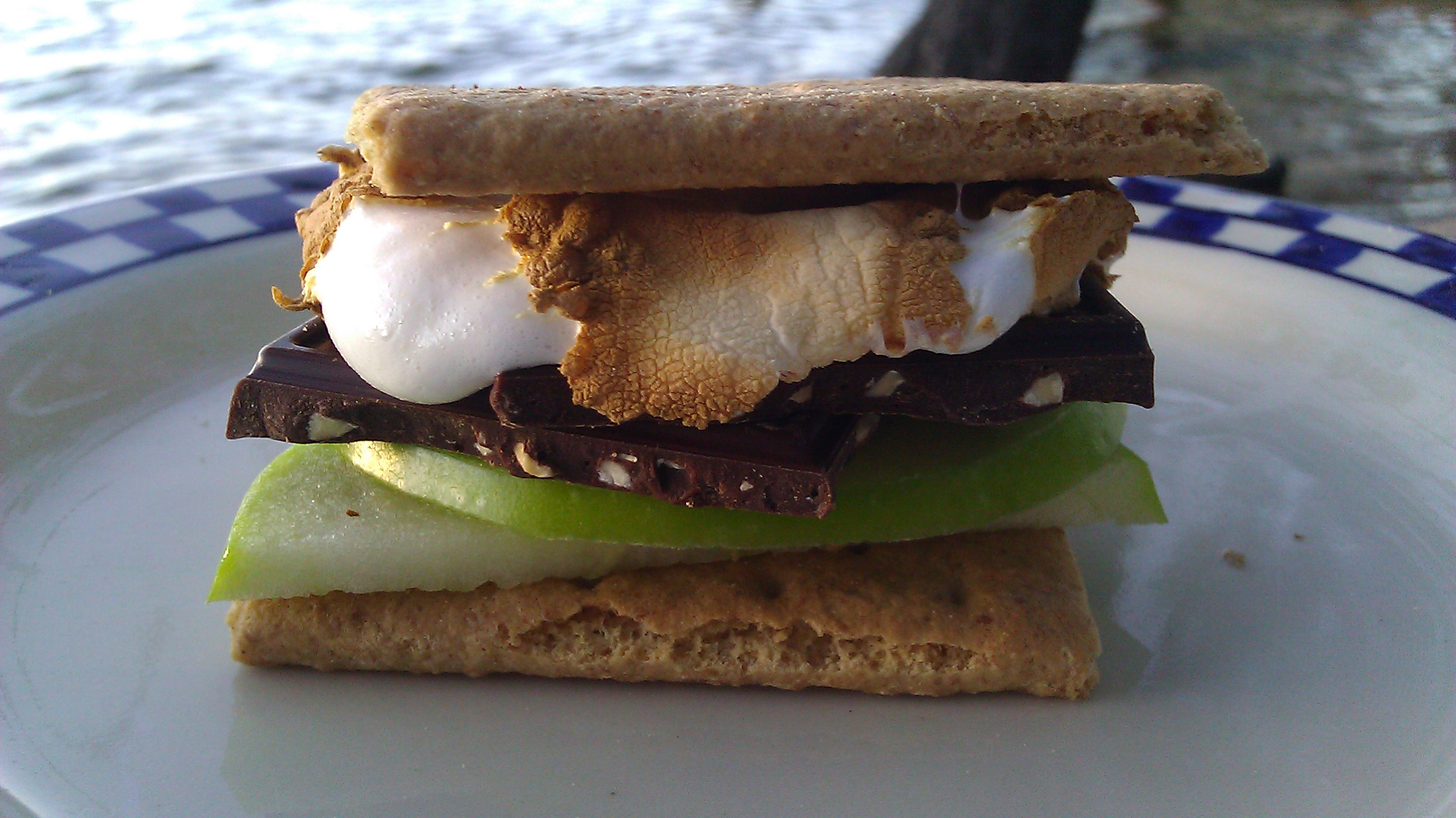 Dark Chocolate Sea Salt Soiree S'more
