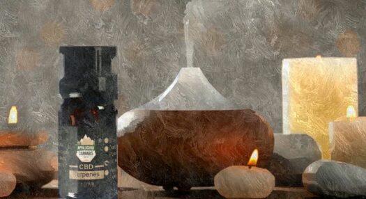 CBD ESSENTIAL OIL TERPENES Hemp Derived Cannabis Terpene Essential Oils