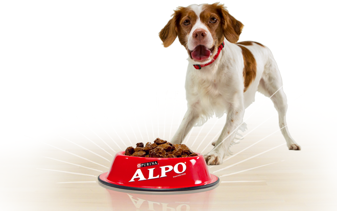 happy_resized_alpo
