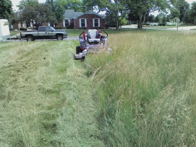 Lawn Mowing - Tall Grass