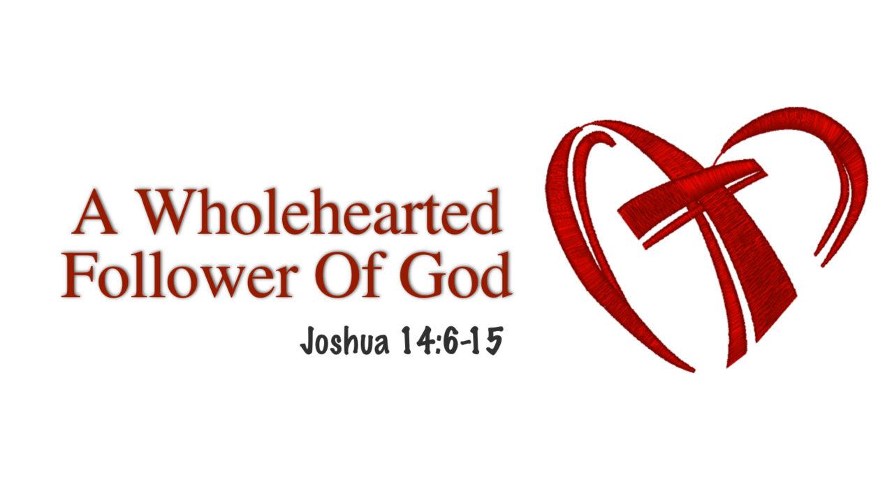 A Wholehearted Follower Of God