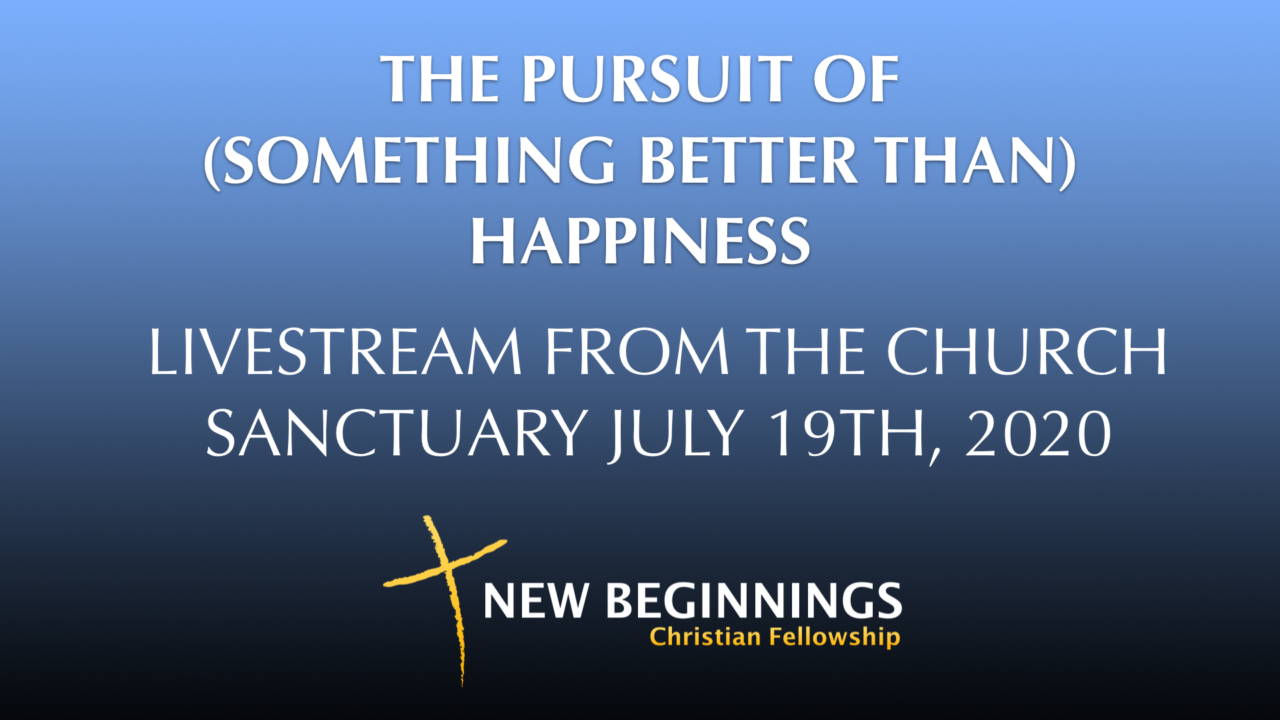 THE PURSUIT OF (SOMETHING BETTER THAN) HAPPINESS
