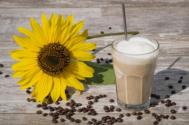 Minas Espresso-6 DIY Iced Coffee Recipes-Vanilla Ice Cream Coffee Frappe