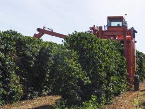 Machinery on Brazilian coffee farm - Minas Espresso Inc.