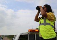 Nuevas rutas y aumento de gallinazos cabeza roja detecta monitoreo de aves migratorias en su paso por Panamá