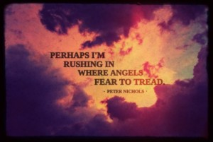 Perhaps-im-rushing-in-where-angels-fear-to-tread