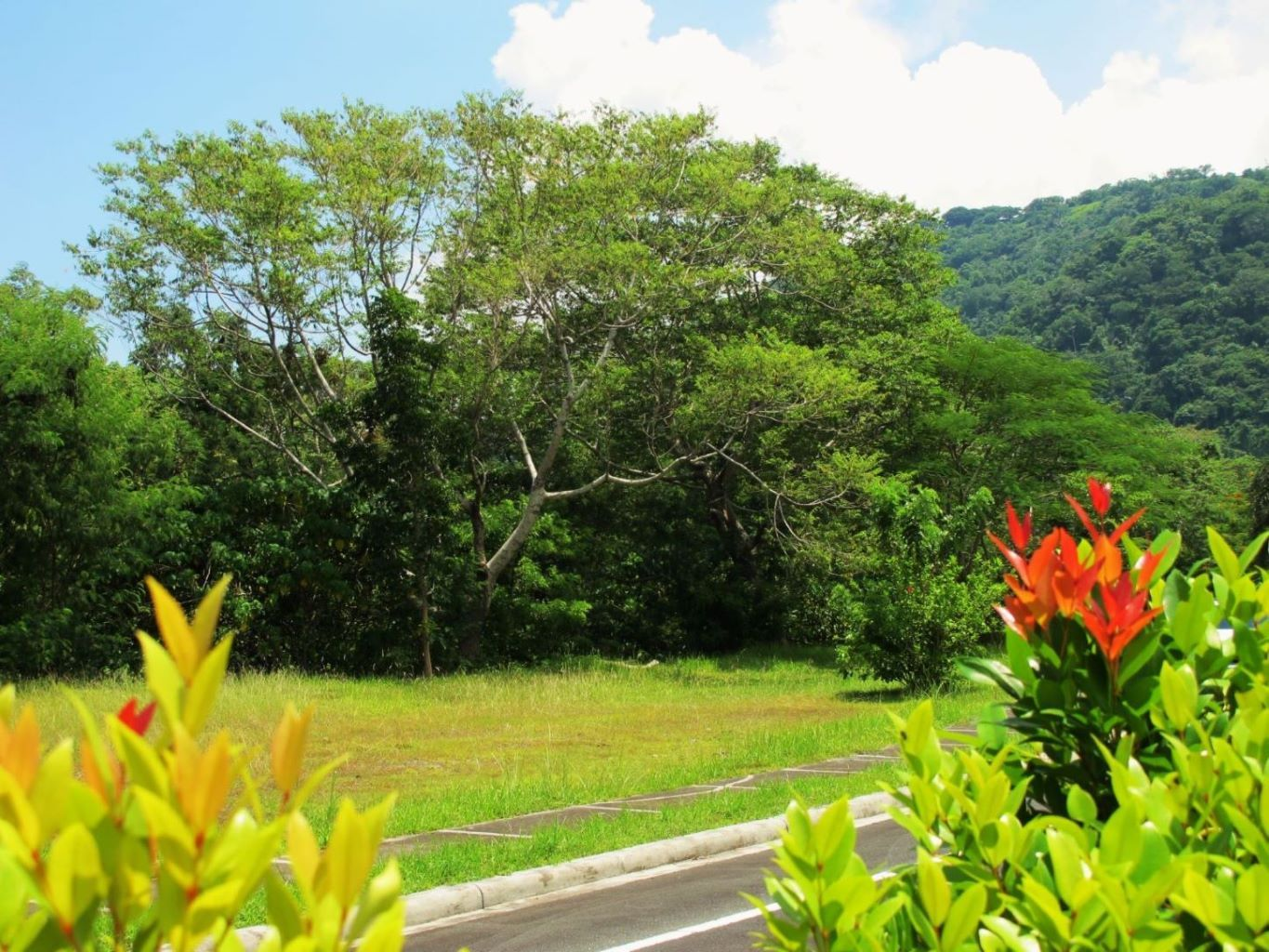 The Lot for Sale at Pueblo Real village in Tagaytay Highlands