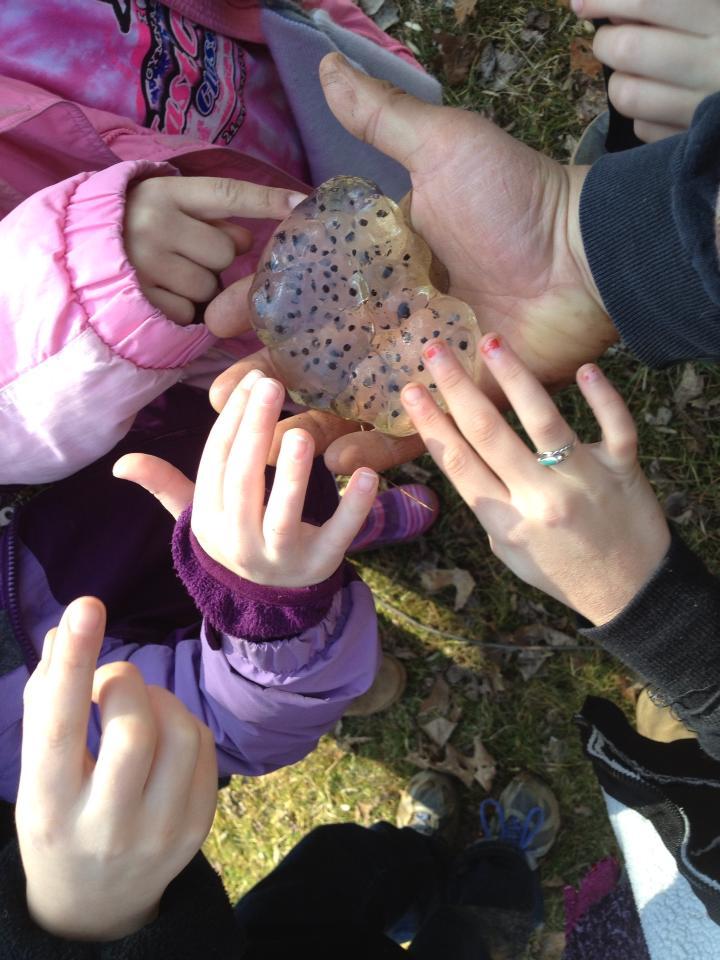 kids with salamander eggs