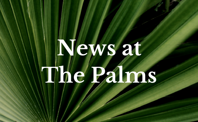 News at The Palms