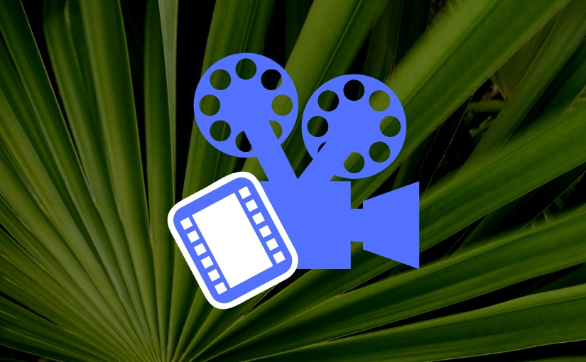Jack Evans presents: The Palms' monthly film