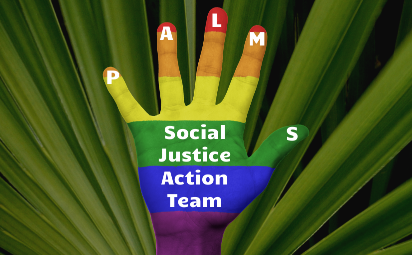 Social Justice Action Team: October update