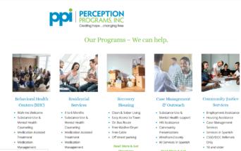 Perception Programs INC