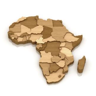 Bois d'Afrique