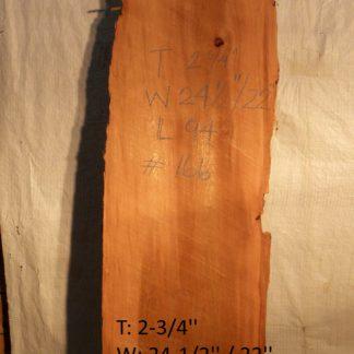 Western Red Cedar 2.75 in X 23 in X 8'