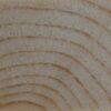 Nom Anglais : Western White Pine