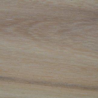 Leucaena pulverulenta