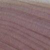 Nom Anglais : Eastern Red Juniper - Eastern Red Cedar