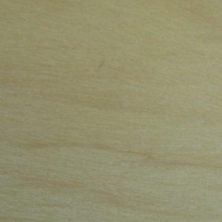 Euxylophora paraensis