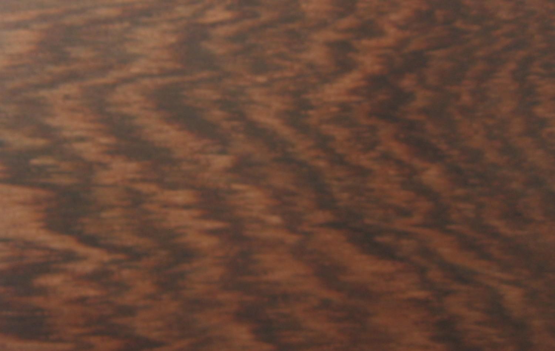 Dalbergia stevensonii