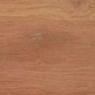Caesalpinia vesicaria