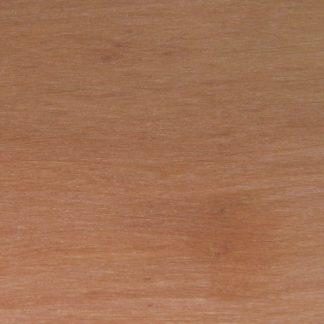 Calyptranthes millspaughii