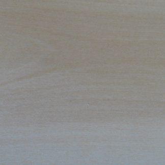 Alnus tenuifolia