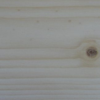 Abies lasiocarpa