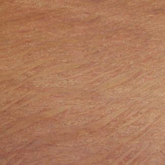 Allocasuarina fraseriana