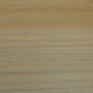 Araucaria angustifola