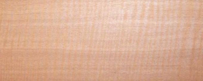 Aningeria altissima - Syn. Pouteria altissima - Aningeria dombeyi