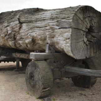 Musée du bois