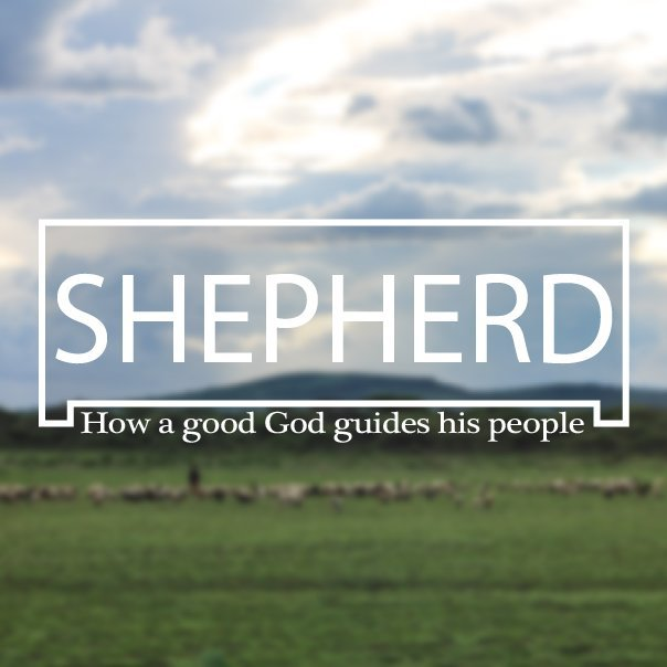 Shepherding One Another Image