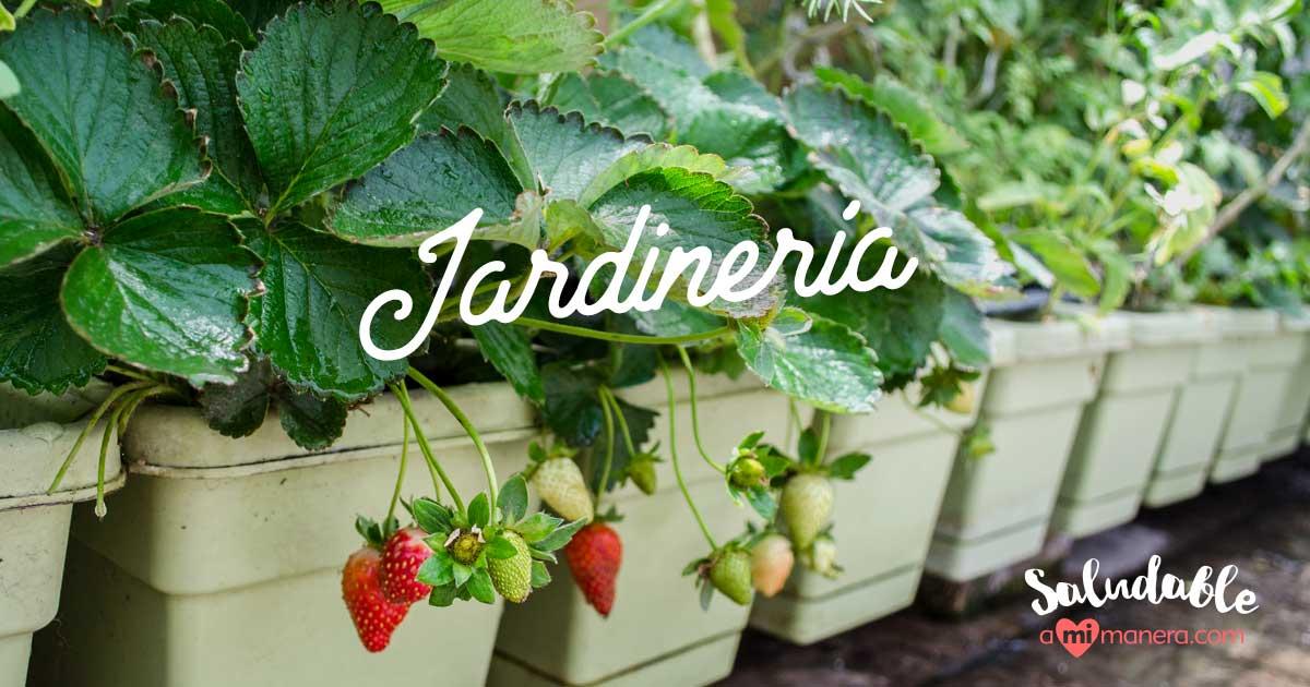 La Jardinería Puede Motivarte A Adelgazar Y Estar En Forma