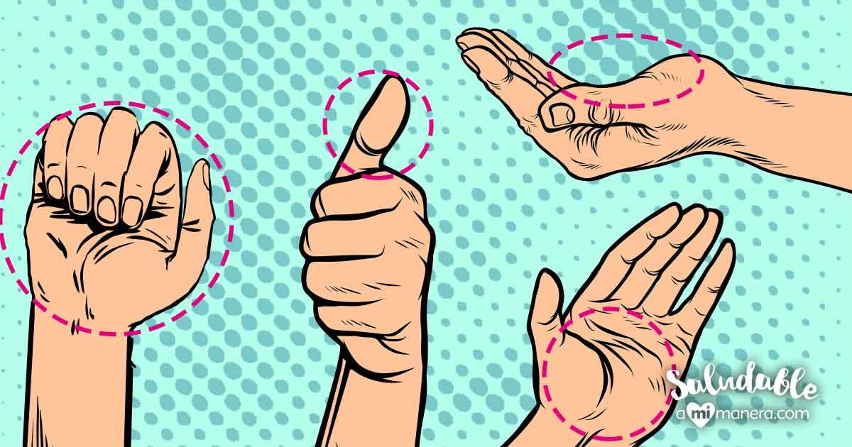 Aprende A Medir Porciones Con Tus Manos Con Esta Guía Fácil