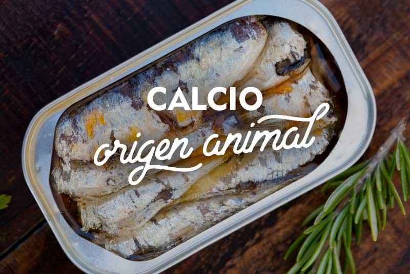 calcio de origen animal