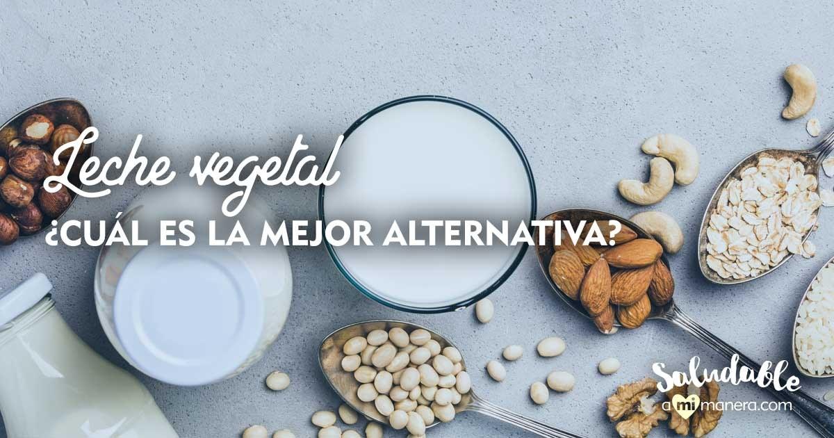 Leche Vegetal La Mejor Alternativa