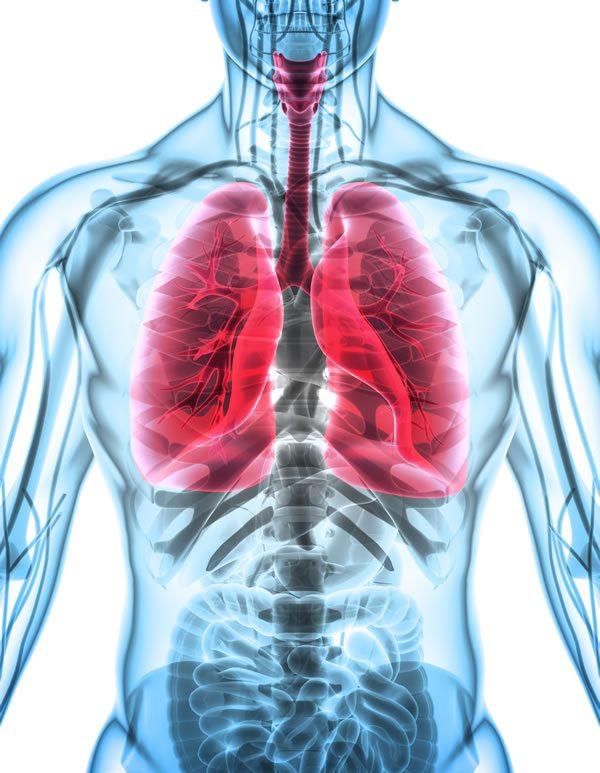 Cystic-Fibrosis