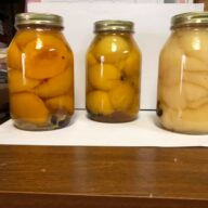Pickled Peaches & More