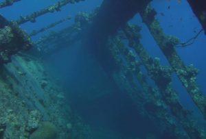 Underwater Ocean Drone Survey in South Florida
