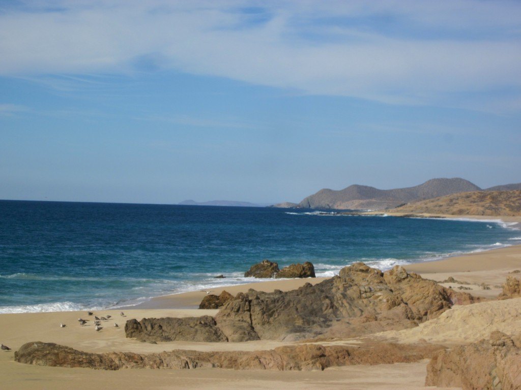 cabo nyc blog lifestyle travel fun food mexico vacations trip ideas