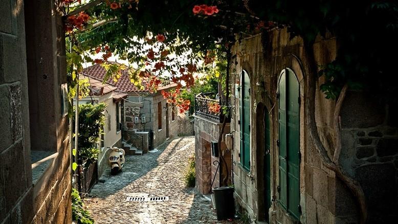 adyhattan luxury travel blog nyc france provence tara schoen moss