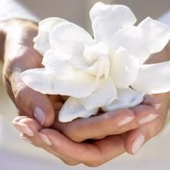 La gratitud, el ingrediente esencial de la vida